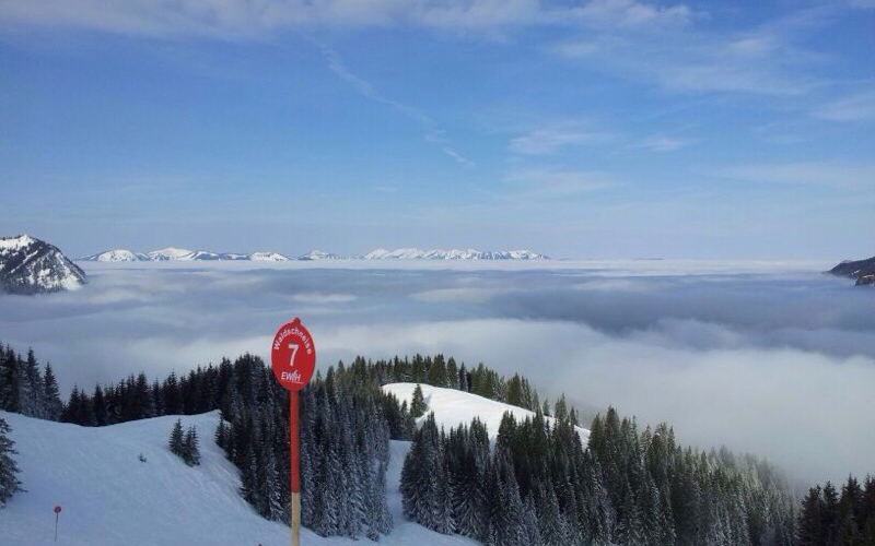 Abfahrt Waldschneise Iseler   Haus Alpenblick in Oberjoch